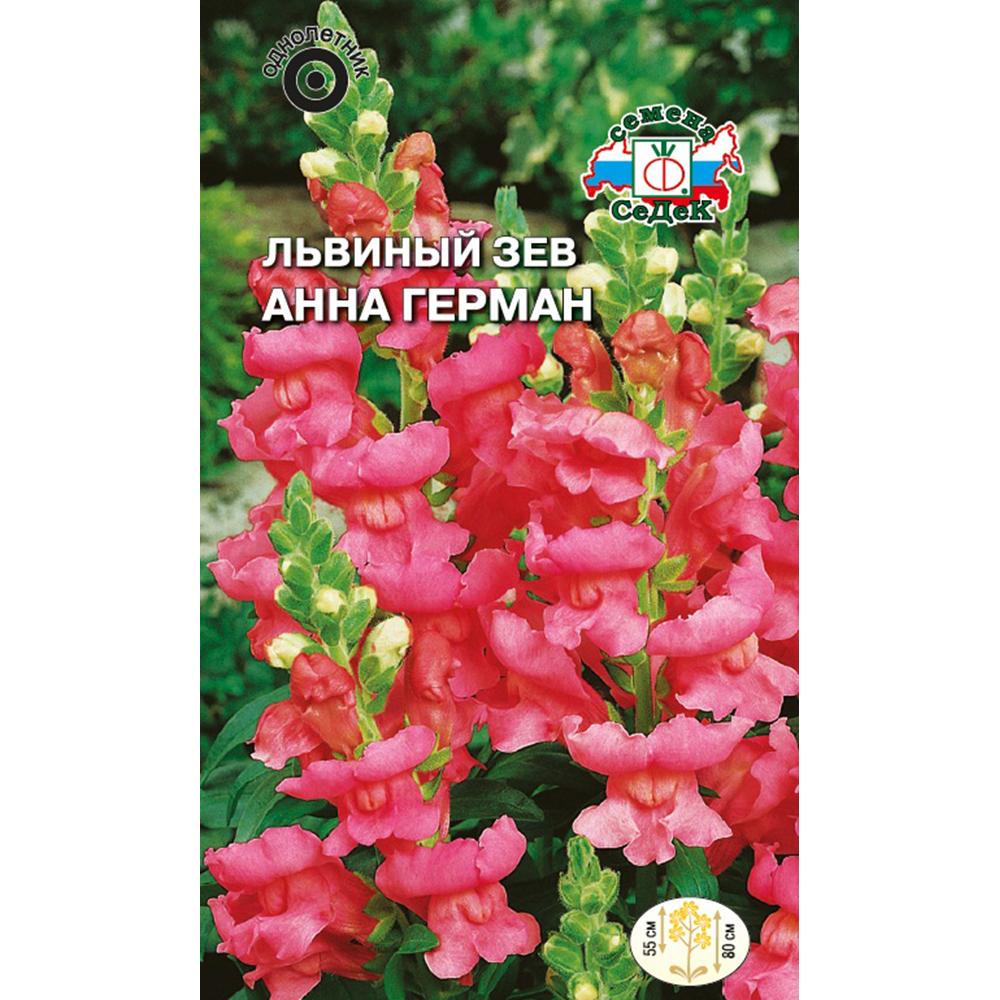 Цветы львиный зев анна герман высокий розовый 0,1г райнхардт в фридрих львиный зев верхом на шмеле