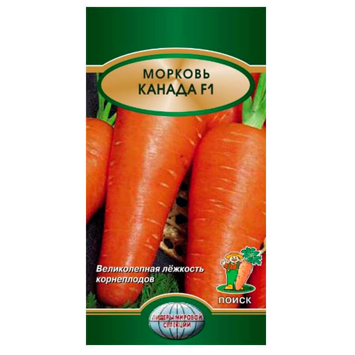 Морковь Канада f1 0,5г Поиск