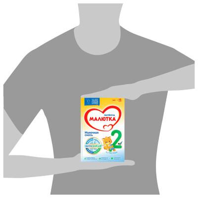 Смесь Малютка-2 молочная с 6 месяцев 600г