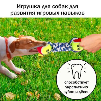 Игрушка для собак Европа канат с двумя мячами 25см хлопок