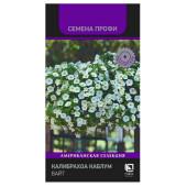 Цветы Калибрахоа каблум вайт 5шт Поиск
